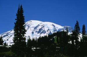 Rainier, parc national, hiver, scénique
