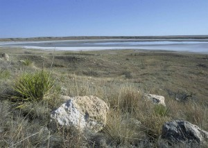 muleshoe, wilderness, refuge