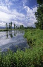 national, reserve, landscapes, photo