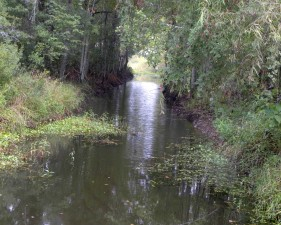 pěkné, rybolov, místo, divoká příroda