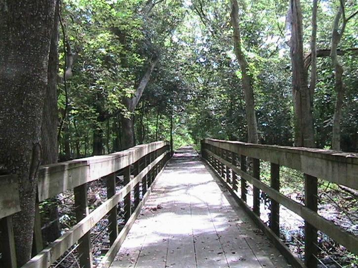 ridge, trail