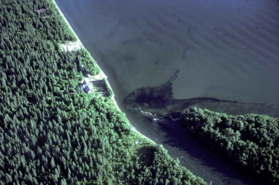 salmon, run, brooks, camp, Katmai, national park, aerial perspective
