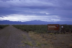Bernardino, wilderness, refuge, sign, road