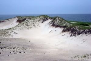 sable, dune, Monomoy, parc national
