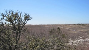 scenic, Monomoy, national, reserve
