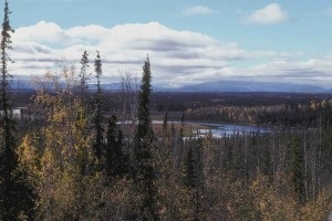 scenic, Tetlin, national, reserve
