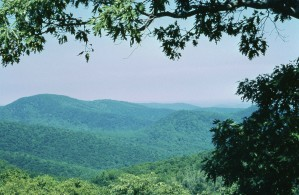 Shenandoah nasjonalpark
