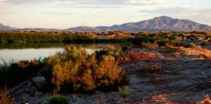 Peterson, réservoir, cendres, prairies, désert, refuge