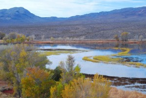 vann, elv, innsjø, landskap