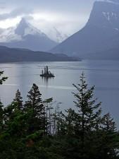 sauvage, oie, île, glacier, parc national