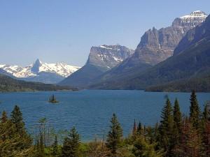 sauvage, oie, île, Mary, lac, glacier, parc national