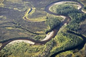 faune, paysage, visualisation