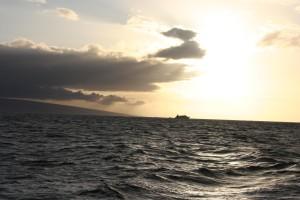 ocean, water, surface