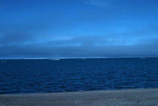 pacific, ocean, coastal, area