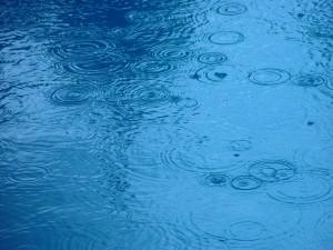pioggia, gocce, acqua