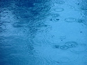 rain, droplets