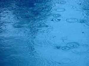 raindrops, water
