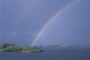 rainbow, shines