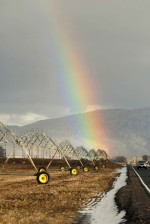 rainbow, arches, irrigation, wheel, line