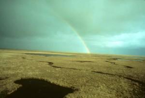 été, arc en ciel, marais, lacs