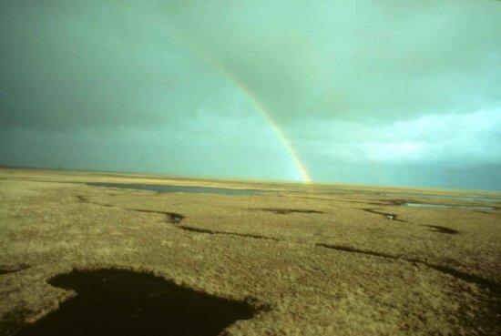 summer, rainbow, swamp, lakes