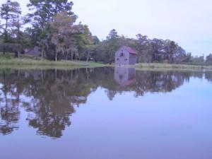 siviili-, sota, aikakausi, riisi, navetta, plantation, joki