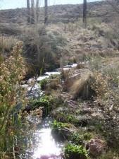alcanzar, fangoso, río, Moapa, valle