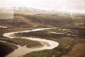 aérien, à l'est, fourchette, Andreafsky, rivière