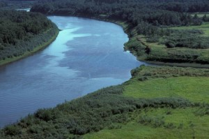 aérien, Innoko, rivière, été