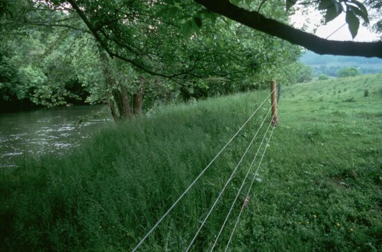 wire fence, nature, river, green grass