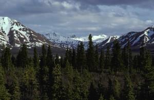 Alaska, utvalg, savage, elven, landskapet