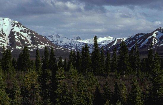 alaska, range, savage, river, landscape