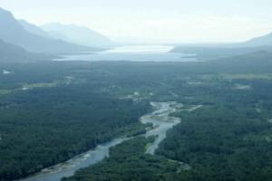 incroyable, rivière, throu, vert, champs