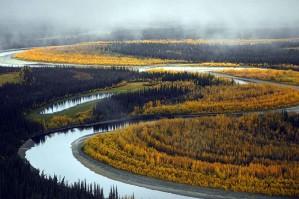 beau, rivière, paysage, automne