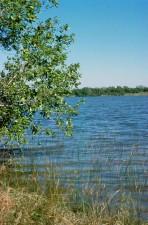 grane, veoma visok, voda