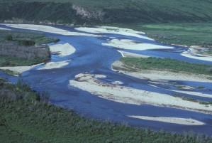 chandalar, řeka, léto, Arctic, národní, wildlfe, útočiště
