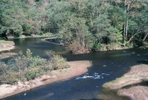 wapitis, rivière, à l'ouest, en Virginie