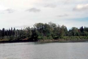 INNOKO, rivière, scenics