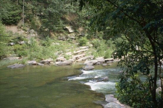 モーリー、ゴセンに川を渡す