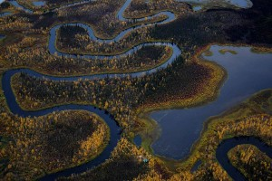 belle, rivière, automne