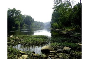 nice, river, scenic, landscape