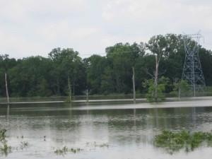rising, river, water