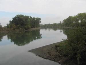 แม่น้ำ ชายฝั่ง