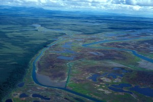 river, delta, swamp, aerial perspective