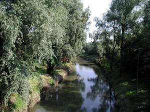 川、自然、生息地