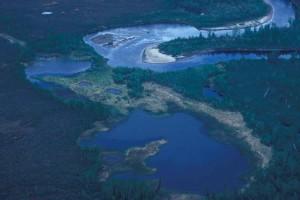 rivière, l'été, la perspective aérienne