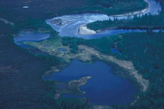 river, summer, aerial perspective