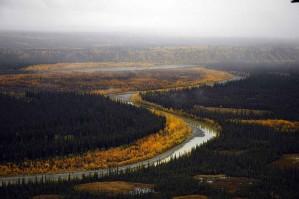 río, paisaje, otoño