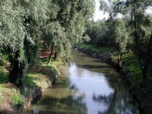 rivière, paysage, nature