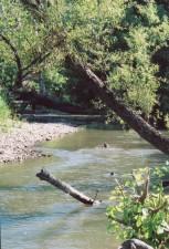 river, scenic, spring